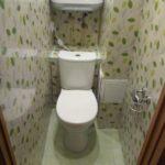 dizain_tualet_panel