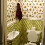 dizayn-i-otdelka-tualeta